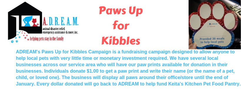 Paws Up for Kibbles Campaign